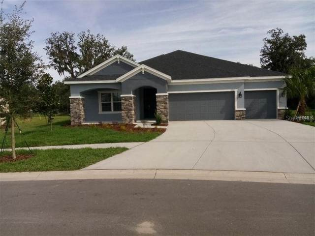 17707 Bright Wheat Drive, Lithia, FL 33547 (MLS #A4471064) :: Griffin Group