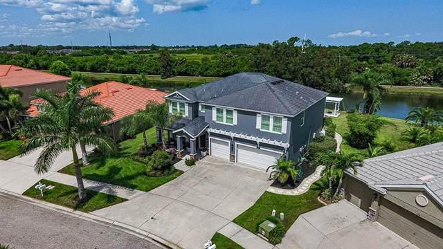 146 Star Shell Drive, Apollo Beach, FL 33572 (MLS #A4471154) :: Frankenstein Home Team
