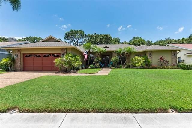 4411 Oak View Drive, Sarasota, FL 34232 (MLS #A4471251) :: Team Borham at Keller Williams Realty