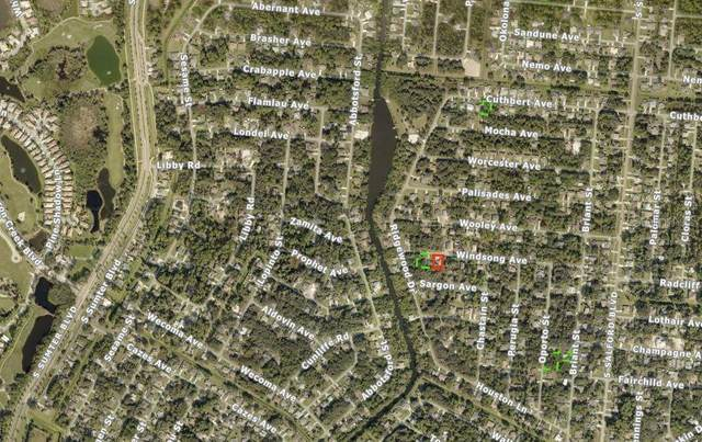 4459 Windsong Avenue, North Port, FL 34287 (MLS #A4471432) :: Team Buky