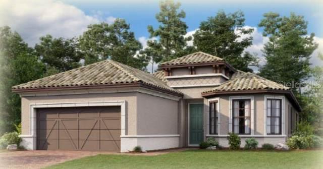 5500 Lampiasi Street, Sarasota, FL 34238 (MLS #A4471613) :: Zarghami Group