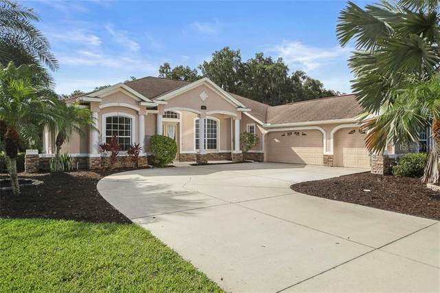 3910 Twin Rivers Trail, Parrish, FL 34219 (MLS #A4471661) :: Mark and Joni Coulter | Better Homes and Gardens