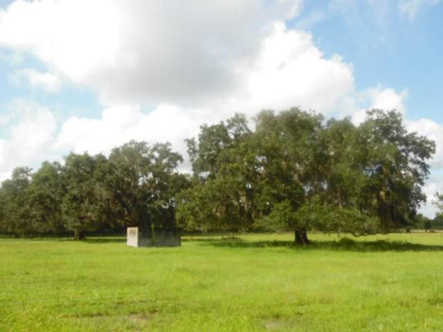 River Road, Myakka City, FL 34251 (MLS #A4471835) :: Griffin Group