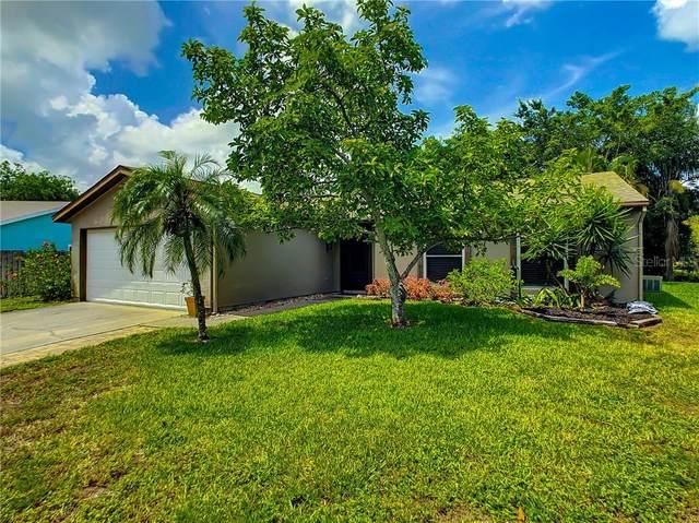 6419 36TH Avenue W, Bradenton, FL 34209 (MLS #A4471842) :: Medway Realty