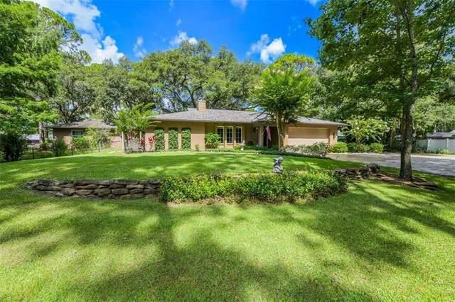 1515 Vereda Verde, Sarasota, FL 34232 (MLS #A4471910) :: Baird Realty Group