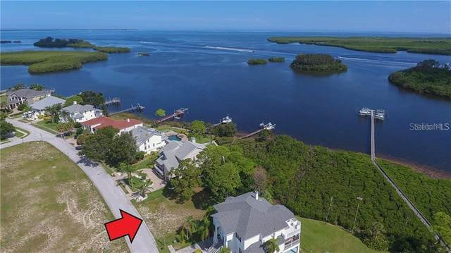 0 N Pointe Alexis Drive, Tarpon Springs, FL 34689 (MLS #A4471926) :: Bustamante Real Estate