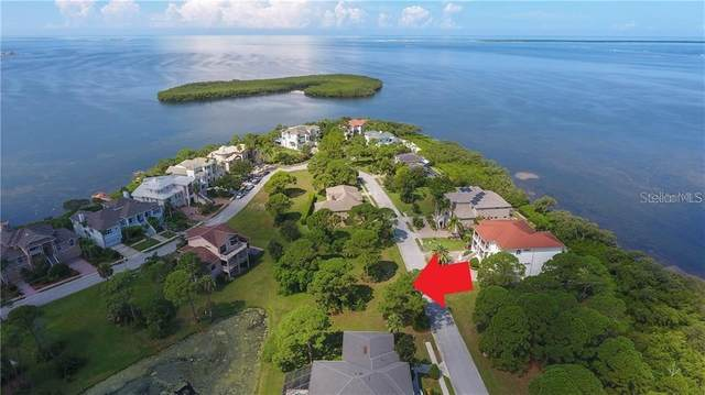 0 Harbour Watch Circle, Tarpon Springs, FL 34689 (MLS #A4471928) :: Bustamante Real Estate