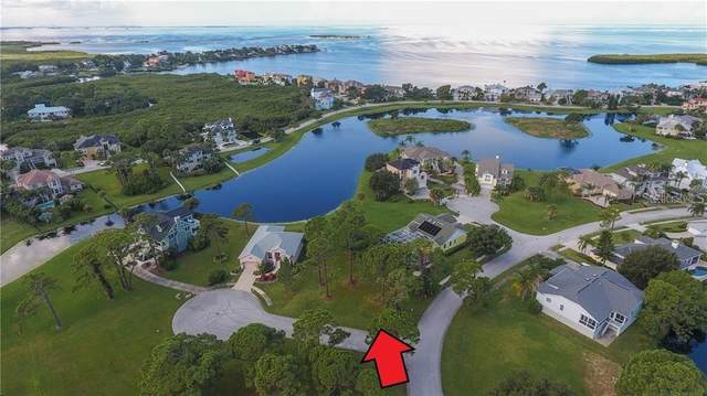 0 Otter Court, Tarpon Springs, FL 34689 (MLS #A4471930) :: Bustamante Real Estate