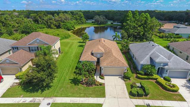 16822 Destrehen Court, Parrish, FL 34219 (MLS #A4472118) :: BuySellLiveFlorida.com
