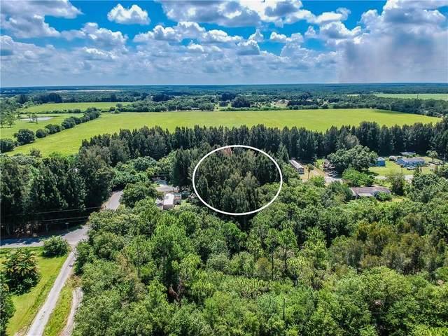 5909 Sabalwood Drive, Punta Gorda, FL 33982 (MLS #A4472588) :: Young Real Estate
