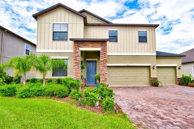 7974 Lago Mist Way, Wesley Chapel, FL 33545 (MLS #A4473811) :: Team Bohannon Keller Williams, Tampa Properties