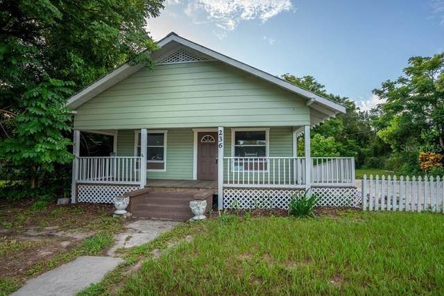 236 N Brevard Avenue, Arcadia, FL 34266 (MLS #A4473867) :: Team Bohannon Keller Williams, Tampa Properties