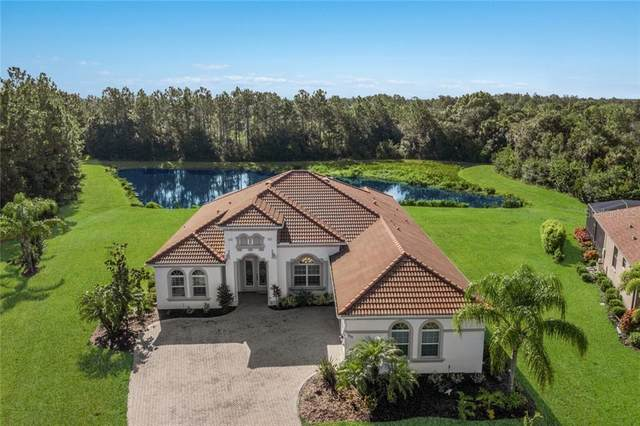 2920 158TH Terrace E, Parrish, FL 34219 (MLS #A4474199) :: Icon Premium Realty