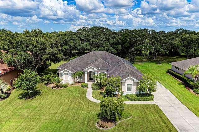 3910 162ND AVE E, Parrish, FL 34219 (MLS #A4474462) :: Icon Premium Realty