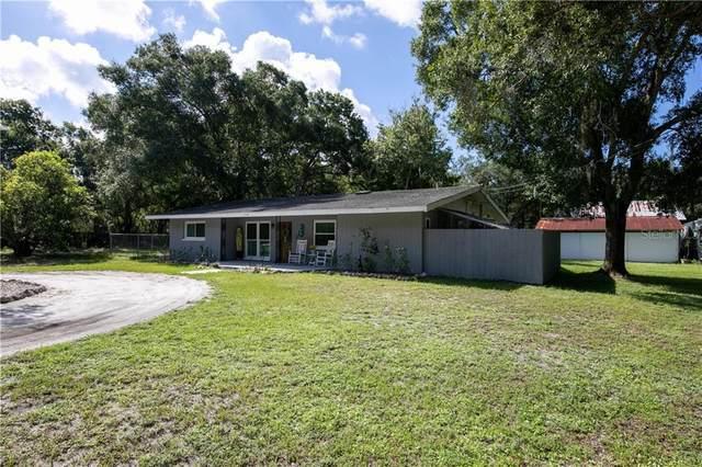 3120 Jamaica Street, Sarasota, FL 34231 (MLS #A4474842) :: Baird Realty Group