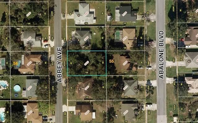 2795 Abbey Avenue, Orlando, FL 32833 (MLS #A4475138) :: Cartwright Realty