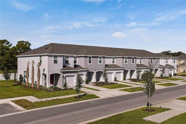 6238 Willowside Street, Palmetto, FL 34221 (MLS #A4475870) :: Real Estate Chicks