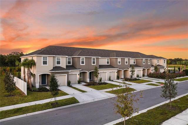 6266 Willowside Street, Palmetto, FL 34221 (MLS #A4475879) :: Real Estate Chicks