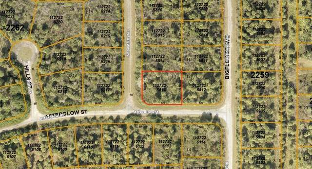 1127225813 Afterglow Street, North Port, FL 34288 (MLS #A4476041) :: Bustamante Real Estate