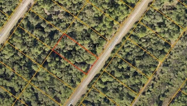 1125229705 Whiptree Circle, North Port, FL 34288 (MLS #A4476044) :: KELLER WILLIAMS ELITE PARTNERS IV REALTY