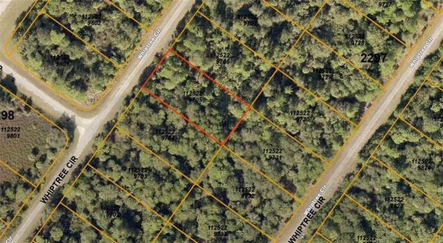 1125229705 Whiptree Circle, North Port, FL 34288 (MLS #A4476045) :: KELLER WILLIAMS ELITE PARTNERS IV REALTY