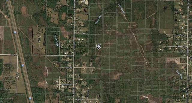 No Name Road, Malabar, FL 32950 (MLS #A4476083) :: Premium Properties Real Estate Services