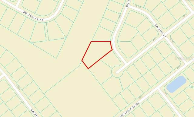 SW 161ST Loop, Ocala, FL 34473 (MLS #A4476248) :: Lockhart & Walseth Team, Realtors