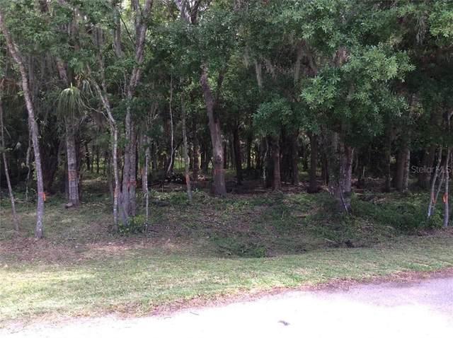 7911 N Leewynn Drive, Sarasota, FL 34240 (MLS #A4476530) :: Premium Properties Real Estate Services
