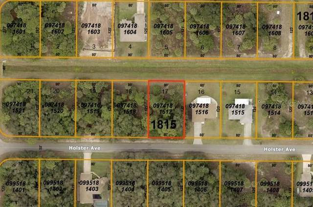 Holster Avenue, North Port, FL 34287 (MLS #A4476741) :: Bustamante Real Estate