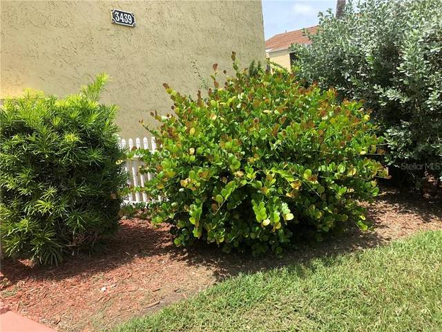 3439 Clark Road #240, Sarasota, FL 34231 (MLS #A4476851) :: Your Florida House Team