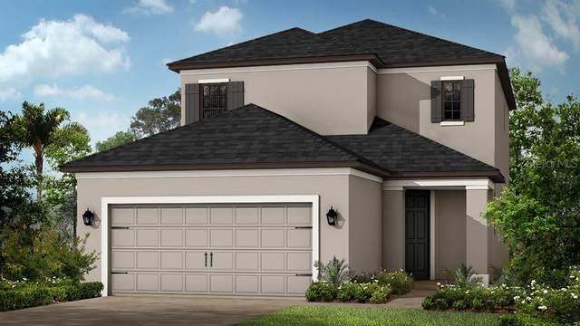 5551 Plateau Glen, Bradenton, FL 34203 (MLS #A4477060) :: The Figueroa Team