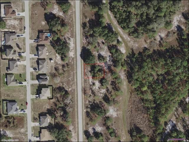 1313 Congo Drive, Poinciana, FL 34759 (MLS #A4477407) :: Bustamante Real Estate