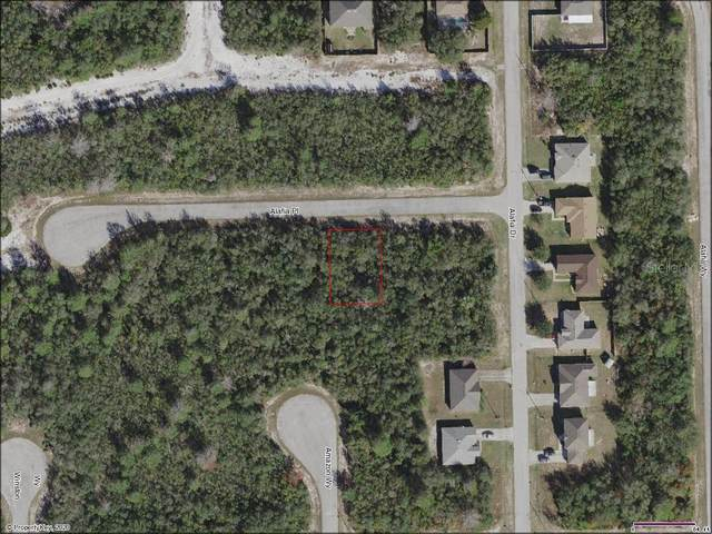 604 Alafia Place, Poinciana, FL 34759 (MLS #A4477418) :: Bustamante Real Estate