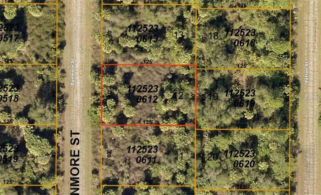 1125230612 Dunmore Street, North Port, FL 34288 (MLS #A4477423) :: Bustamante Real Estate