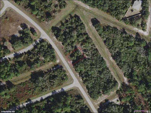 1533 Mediterranean Drive, Poinciana, FL 34759 (MLS #A4477425) :: Bustamante Real Estate