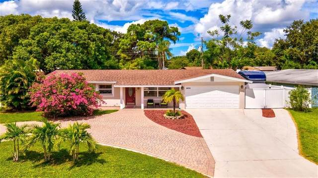 4634 Maceachen Boulevard, Sarasota, FL 34233 (MLS #A4477582) :: Sarasota Home Specialists