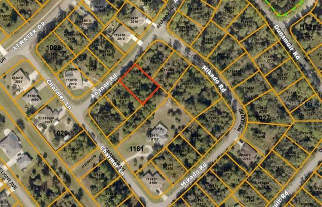 Ananas Road, North Port, FL 34288 (MLS #A4477891) :: Zarghami Group