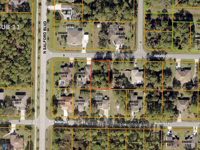Caballero Avenue, North Port, FL 34286 (MLS #A4478147) :: KELLER WILLIAMS ELITE PARTNERS IV REALTY
