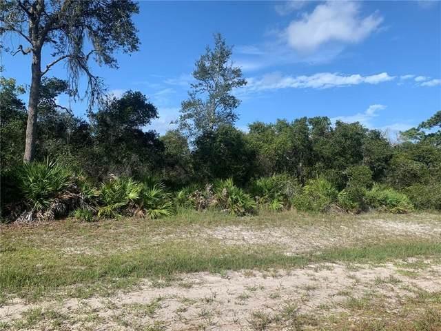 5690 Blackjack Court S, Punta Gorda, FL 33982 (MLS #A4478267) :: Pristine Properties