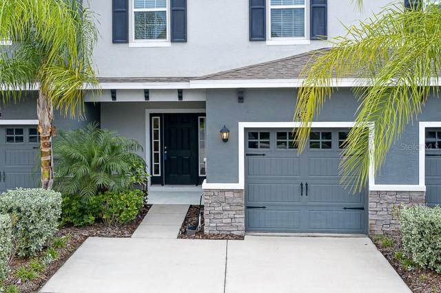 6458 Baytown Drive, Sarasota, FL 34240 (MLS #A4478548) :: Bustamante Real Estate
