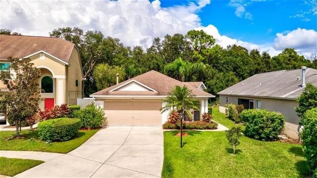 11815 Acorn Woods Terrace, Lakewood Ranch, FL 34202 (MLS #A4478552) :: Sarasota Home Specialists