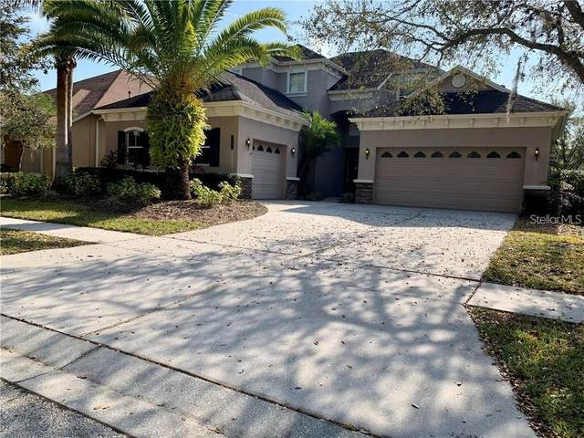 20209 Moss Hill Way, Tampa, FL 33647 (MLS #A4478810) :: The Duncan Duo Team