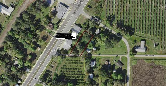 4413 SW Welles Avenue, Arcadia, FL 34266 (MLS #A4478910) :: Pristine Properties