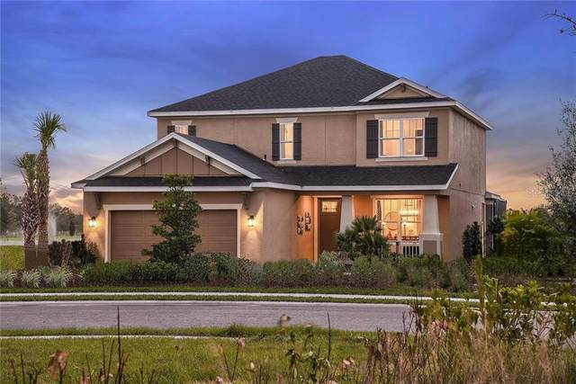 4824 Los Robles Court, Palmetto, FL 34221 (MLS #A4478953) :: Premier Home Experts