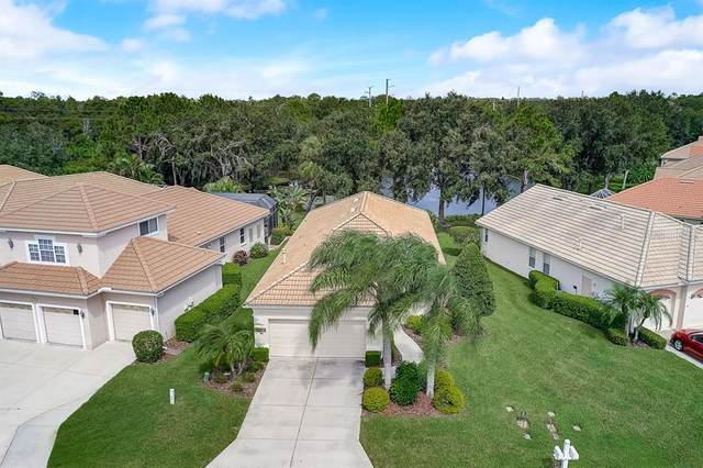 6148 Aviary Court, Bradenton, FL 34203 (MLS #A4478989) :: Zarghami Group