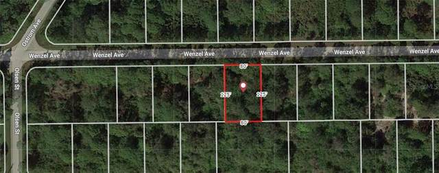 14131 Wenzel Avenue, Port Charlotte, FL 33981 (MLS #A4479200) :: Griffin Group