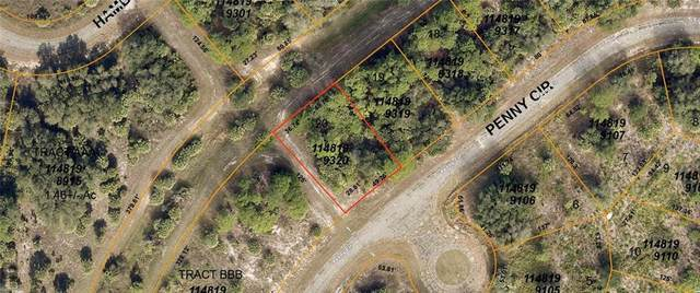 Penny Circle, North Port, FL 34288 (MLS #A4480528) :: Sarasota Home Specialists