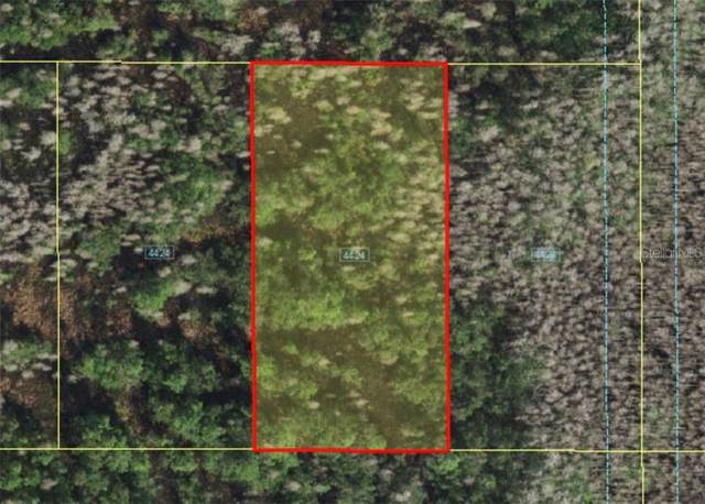 Holopaw Groves Road, Saint Cloud, FL 34773 (MLS #A4481008) :: Griffin Group