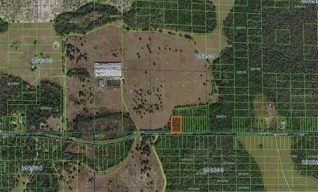 Deen Still Road E, Polk City, FL 33868 (MLS #A4481156) :: Team Buky