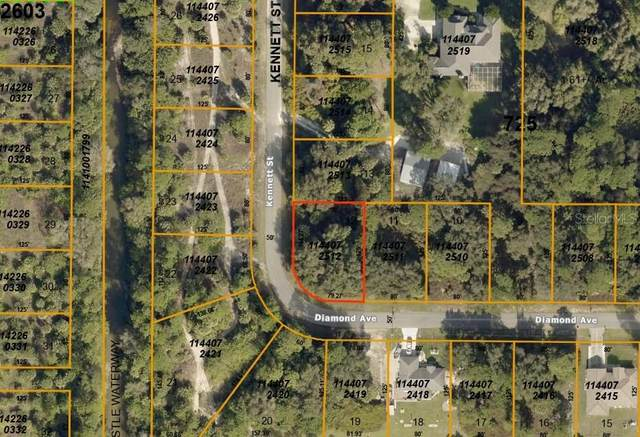 Diamond Avenue, North Port, FL 34288 (MLS #A4481164) :: Griffin Group